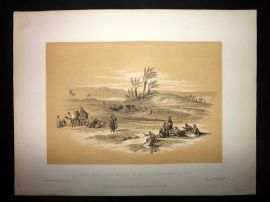 David Roberts Holy Land 1887 Ayun Musa - The Wells of Moses Wilderness of Tyh